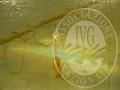 UD101315_3-5_web.jpg