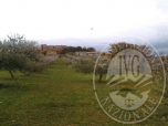 Immagine di GIANO DELL'UMBRIA (PG) VIA N.D. LOTTO 2
