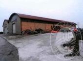 Lotto 2: piena proprieta' due capannoni adiacenti e collegati con area di pertinenza in Fidenza