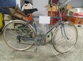 Bicicletta elettrica, bicicletta